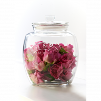 Ecplus Ecplus 2l Glass jar PTM-20